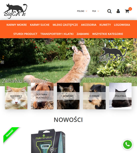 bigcats.pl Image